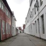 Repslageranlegget i Fjøsangerveien 71 får 320 studentboliger, Bygningene er ordnet i tre parallelle rekker langs en intern gate. Husrekken mot Fjøsangerveien demper støyen.fordelt på to byggetrinn.