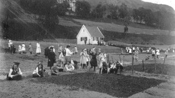 Gjør grunnundersøkelser og arkeologiske registreringer i Fløen