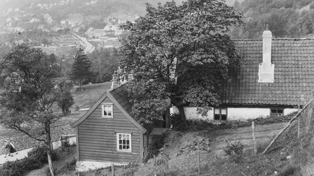 Både Haukeland gård og Haukelandstræet endte som avfall