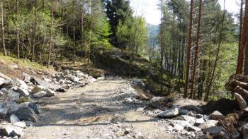 Nyeste del av Løvstien ender i et fjellparti