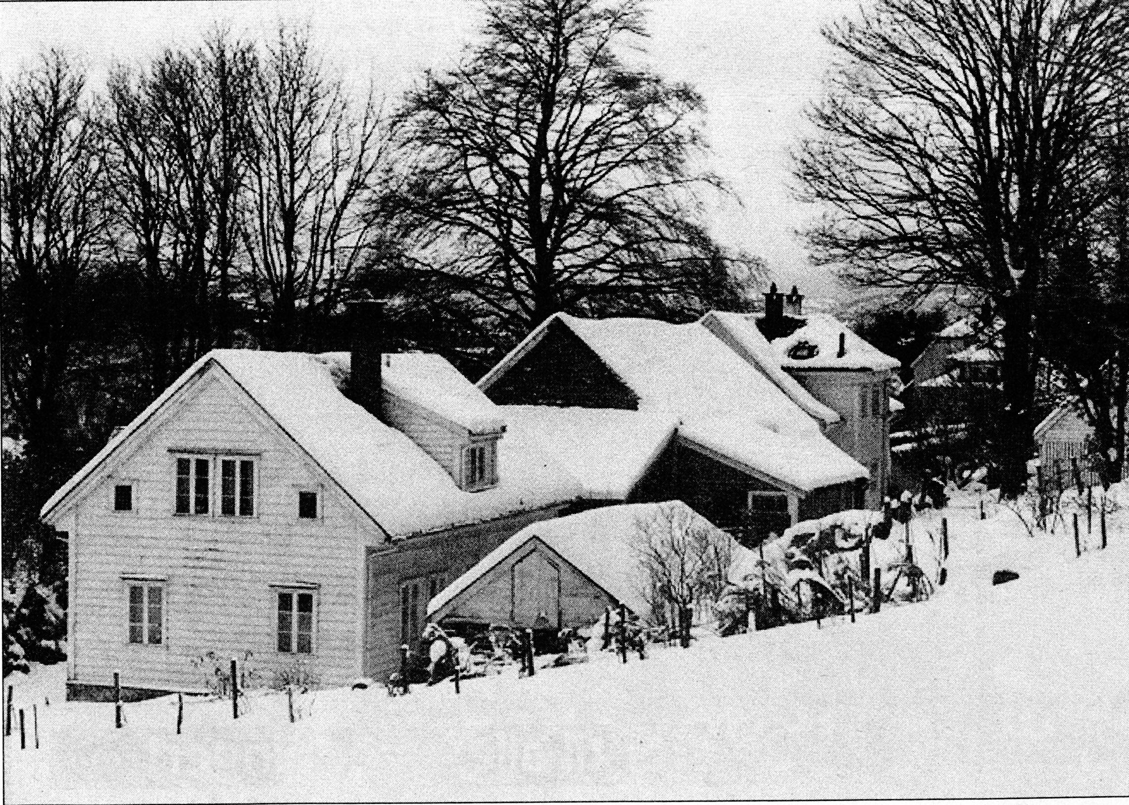 To hundre år med gårdsdrift på Grønnestølen